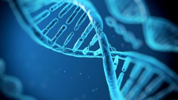 La vita prosegue dopo la morte nel nostro DNA
