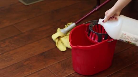 Aggiunge un ingrediente naturale nell'acqua: il rimedio efficace per l'igiene dei pavimenti